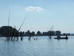 Csónakosok a tartáson